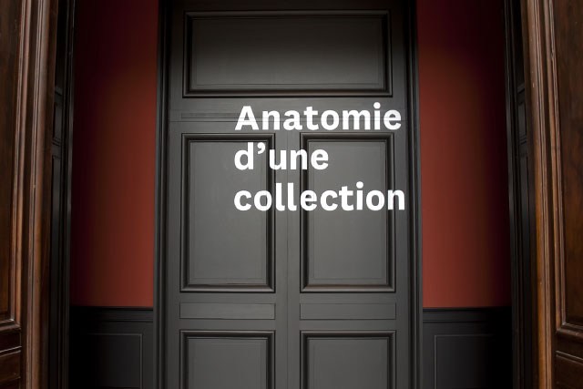Anatomie d'une collection
