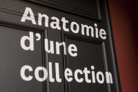 «Anatomie d'une collection»